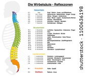 backbone reflexology chart with ... | Shutterstock .eps vector #1100636198