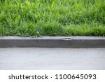 stone curb near the road.... | Shutterstock . vector #1100645093