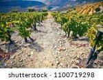 steep  stony path among green... | Shutterstock . vector #1100719298