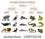 classification of animals.... | Shutterstock .eps vector #1100725133