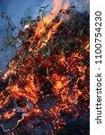 Small photo of Bush burn and fiery blur set
