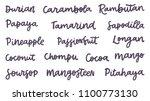 vector name tropical fruits... | Shutterstock .eps vector #1100773130
