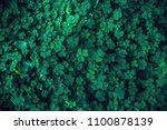 leaf clovers field  for pattern ... | Shutterstock . vector #1100878139
