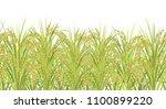 rice field. seamless horizontal ... | Shutterstock .eps vector #1100899220