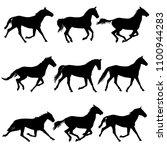set animal silhouette of black... | Shutterstock .eps vector #1100944283