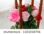 Beautiful Pink And Red Roses...