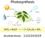 a science education of... | Shutterstock .eps vector #1101042029