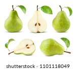 pears collection with leaf... | Shutterstock . vector #1101118049