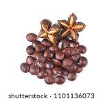 inca seeds on white background | Shutterstock . vector #1101136073