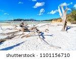 in australia whitsunday  island ...   Shutterstock . vector #1101156710
