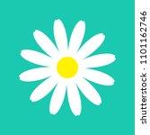 white daisy chamomile flower... | Shutterstock .eps vector #1101162746