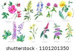 watercolor set of summer... | Shutterstock . vector #1101201350