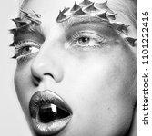woman face beauty. closeup... | Shutterstock . vector #1101222416