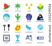 set of 16 icons such as two... | Shutterstock .eps vector #1101249026