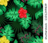 exotic tropical nature... | Shutterstock .eps vector #1101249839