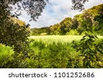 looking towards an uncultivated ... | Shutterstock . vector #1101252686