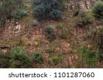 red rock with green plants on... | Shutterstock . vector #1101287060