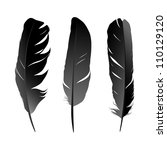 vector set of feather on white... | Shutterstock .eps vector #110129120