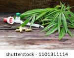 marijuana leaves  marijuana... | Shutterstock . vector #1101311114