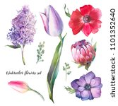 hand painted floral elements...   Shutterstock . vector #1101352640