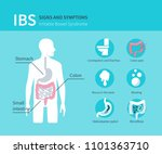 irritable bowel syndrome... | Shutterstock .eps vector #1101363710