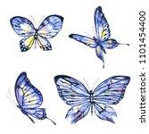 beautiful blue butterfly... | Shutterstock . vector #1101454400