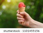 female hand holding strawberry... | Shutterstock . vector #1101455156