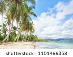 panorama of secluded beach of ...   Shutterstock . vector #1101466358
