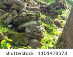 tumble down dry stone wall in... | Shutterstock . vector #1101473573