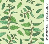 seamless pattern with nettle ... | Shutterstock .eps vector #1101626870