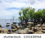 bay scene with baby rocks | Shutterstock . vector #1101638966