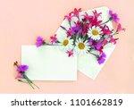beautiful flowers chamomiles ... | Shutterstock . vector #1101662819