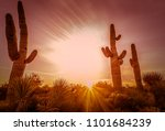Arizona Desert Landscape ...