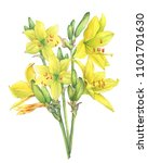 Bouquet Of Yellow Lilies Flowe...