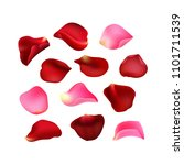 Stock vector set of rose petals red and pink petals flowers d effect vector 1101711539