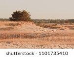 steppe autumn landscape in. a... | Shutterstock . vector #1101735410