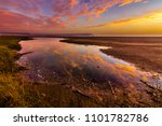 lluta river wetlands at arica ... | Shutterstock . vector #1101782786