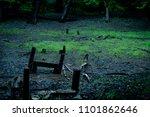broken and forgotten bridge   Shutterstock . vector #1101862646
