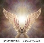 Small photo of Channeling Angelic Healing Energy - female hands reaching up with Golden Angel wings either side on a warm toned ethereal background with copy space above