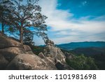 scenic rocks among beech forests | Shutterstock . vector #1101981698