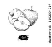 apple drawing. hand drawn fruit ... | Shutterstock . vector #1102004219