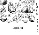 vector frame with coconuts and... | Shutterstock .eps vector #1102029473