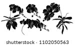 set of isolated silhouette... | Shutterstock .eps vector #1102050563