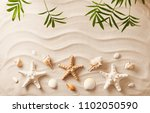 sea shells on sand. summer... | Shutterstock . vector #1102050590