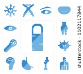 set of 13 icons such as human...
