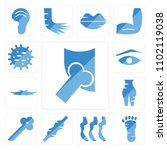 set of 13 icons such as hip...
