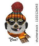 vector meerkat with glasses ... | Shutterstock .eps vector #1102126043
