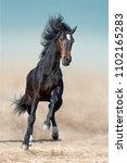 bay stallion with long mane run ... | Shutterstock . vector #1102165283