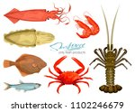 seafood in cartoon style. icons.... | Shutterstock .eps vector #1102246679