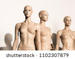 naked bald mannequins and... | Shutterstock . vector #1102307879